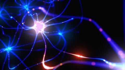 Blue Neural
