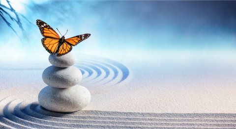 In Harmony with Wholeness Andrea Isaacs